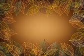 叶帧棕色背景 — 图库矢量图片