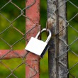 Padlock on an iron bars fence — Stock Photo