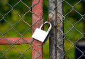 Padlock on an iron bars fence — Stock Photo