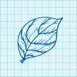 Drawing of leaves on graph paper vector — Stock Vector