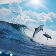 Two happy playful dolphins jumping on breaking wave — Stock Photo #13898271