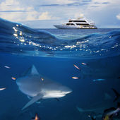 Ocean Wildlife seascape with yacht and shark — Stock Photo