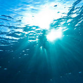 Sunrays breaking through the water surface — Stock Photo