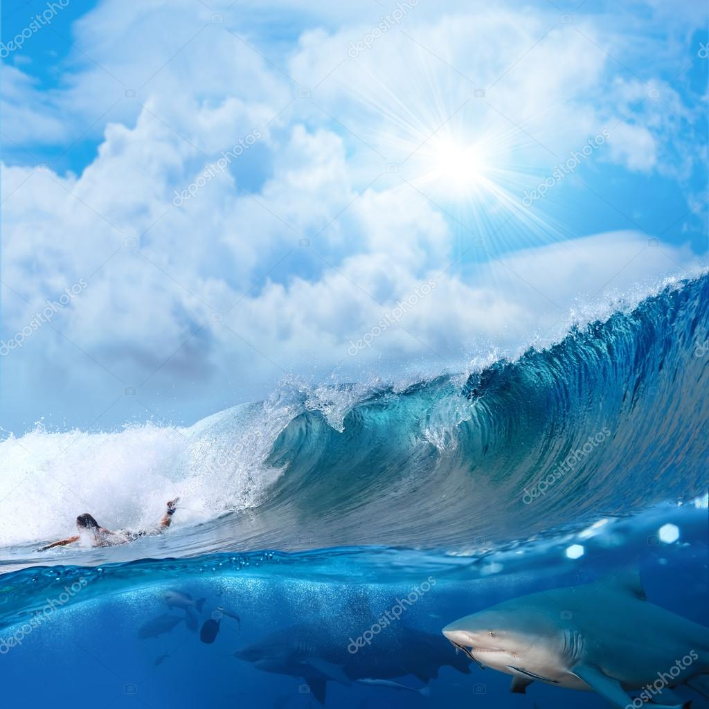 Ocean view with sunlight surfer and wild sharks underwater ...