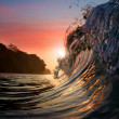 Surfing design template. Green blue colored ocean surfing wave breaking and splashing at sunset time — Stockfoto