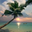 Sunset on beautiful tropical beach with palms and boat on water — Stock Photo