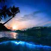 Beautiful tropical palm beach with yellow sand breaking splashing shorebreak under sunset — Stock Photo