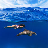 Swimmer girl in pink swimsuit and dolphin playing in the sea underwater — Stock Photo