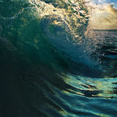 Surfing tropical design template. breaking curled ocean wave — Stock Photo