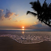 Tropical design postcard. Beautiful sunset on tropical beach with palm silhouettes sea foam and water surface under clouds — Stock Photo