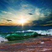 Beautiful tropical beach with yellow sand breaking splashing curly wave under bright sunlight — Stock Photo