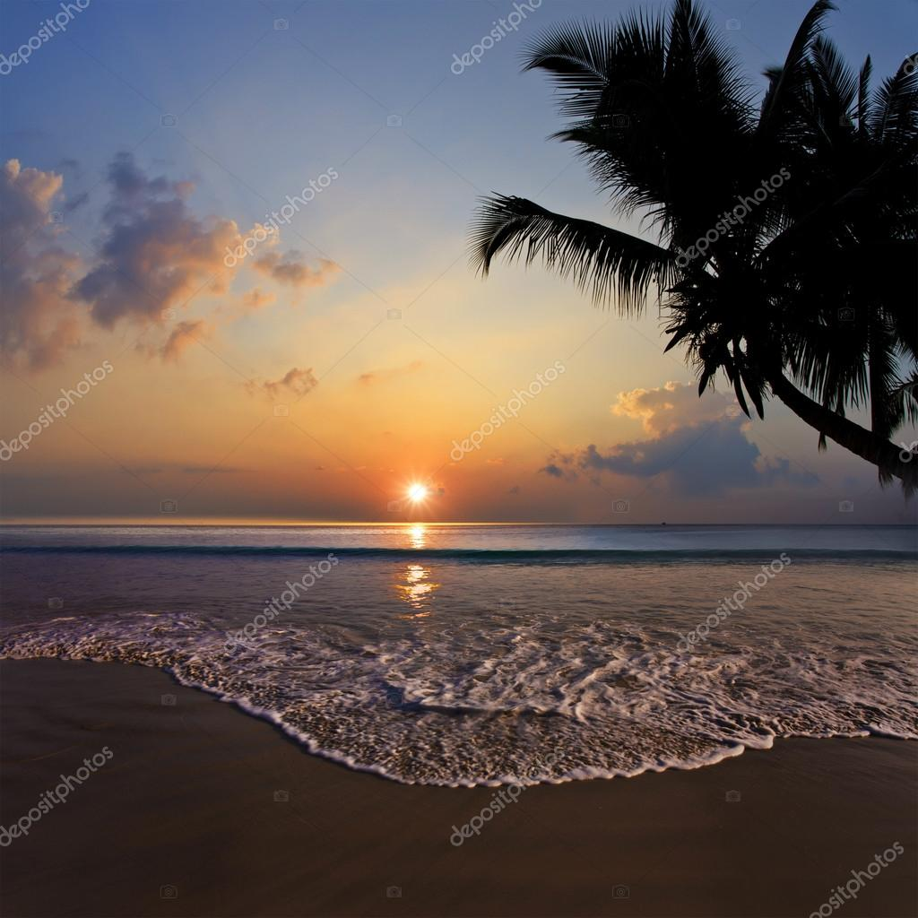 Tropical Design Postcard. Beautiful Sunset On Tropical