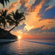 Tropical beach with palm trees at sunset time — Stock Photo