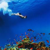 Profesyonel freediver apne su altında kayma yapıyor — Stok fotoğraf