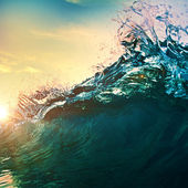 Wave at sunset — Stock Photo
