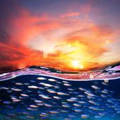 Tropical sunset at sea — Stock Photo
