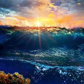 Splitted underwater sunset wet template — Stock Photo