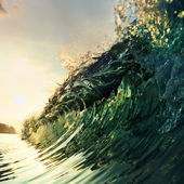 Tropical palm beach — Stock Photo