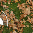 Autumn leaves and rake — Stock fotografie