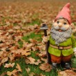 Stock Photo: Garden gnome in autumn