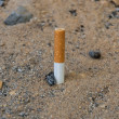 Last piece of a cigarette put out in sand, stop smoking — Stock Photo