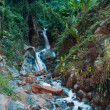 Nice small waterfall in jungle - Nature composition — Stock Photo