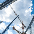 Stock Photo: Cranes line and machinery at construction site