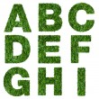 Letters a,b,c,d,e,f,g,h,i made of green grass isolated on white — Stock Photo