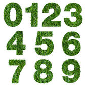Numbers made of green grass isolated on white — Stock Photo