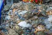 Fresh crabs ready to be cooked on ice in a fish market — Stockfoto