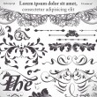 Stok Vektör: Vector set: calligraphic design elements and page decoration
