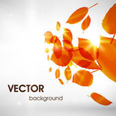 Abstract floral spring background. — Vecteur