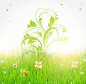 Zomer vector gras behang met bloemen, lieveheersbeestje, druppels en glans van de zon — Stockvector