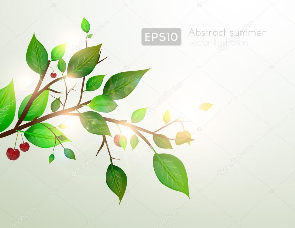 Branch with fresh green leaves and cherry for summer design — Stock Vector #16419289