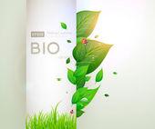 Bio koncept designu ekologicky šetrné pro letní květinové banner — Stock vektor