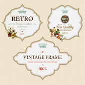 Set of ornate vintage vector frames for retro invitation design — Stock Vector