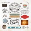 Vector set: calligraphic design elements and page decoration, Premium Quality, Seafarers and Satisfaction Guarantee Label collection with black grungy design and flowers — Stock Vector #16991221
