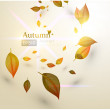 Autumn Background-Autumn Leaves Falling — Stock Vector #16991261