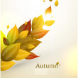 Autumn Background-Autumn Leaves Falling — Stock Vector #16991263