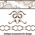 Set of floral elements for design. — Stock Vector #16992439
