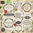 Christmas decoration collection. Set of calligraphic and typographic elements, frames, vintage labels. Ribbons, stickers, Santa and angel. Hand drawn christmas balls, fur tree branches and gifts. — Stock Vector #17462461