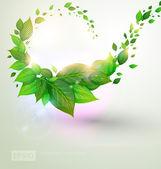 Bio koncepcja projektu eco przyjazny banner kwiatowy lato — Wektor stockowy