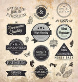 Collection of Premium Quality and Guarantee Labels with retro vintage styled design and old paper grunge texture — Stock Vector