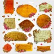 Vector set: vintage labels with flowers — Stock Vector