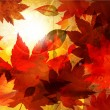 Autumn background — Vector de stock #18011159