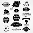 Vector set: calligraphic design elements and page decoration, Premium Quality and Natural Product Label collection with black grungy design — Stock Vector