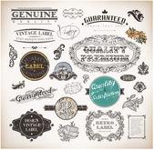 Calligraphic design elements, page decoration, retro labels and frames set for vintage design Old paper grunge texture — Stockvektor