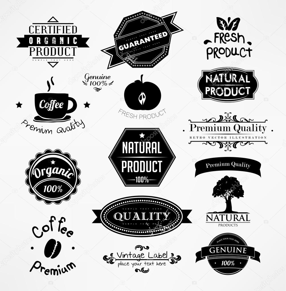 Vector set: calligraphic design elements and page ...