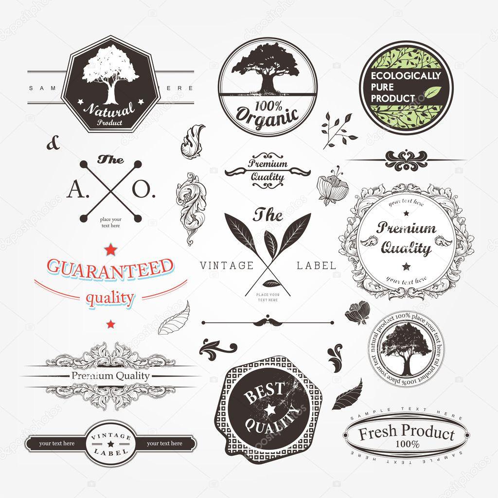Calligraphic design elements page decoration retro for Decoration elements