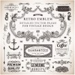 Calligraphic design elements, page decoration, retro labels and frames set for vintage design Old paper grunge texture — Stock Vector